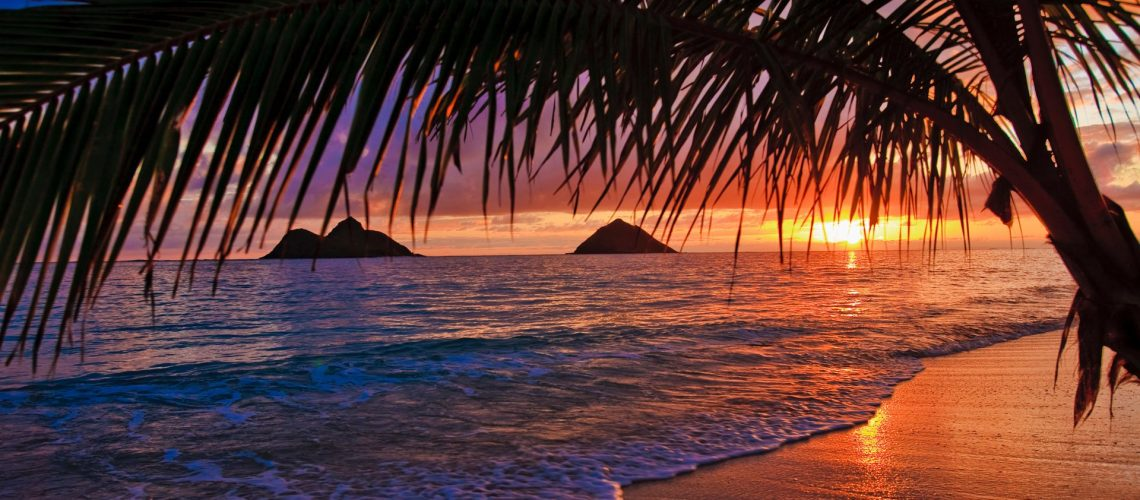 exotic holiday in hawaii